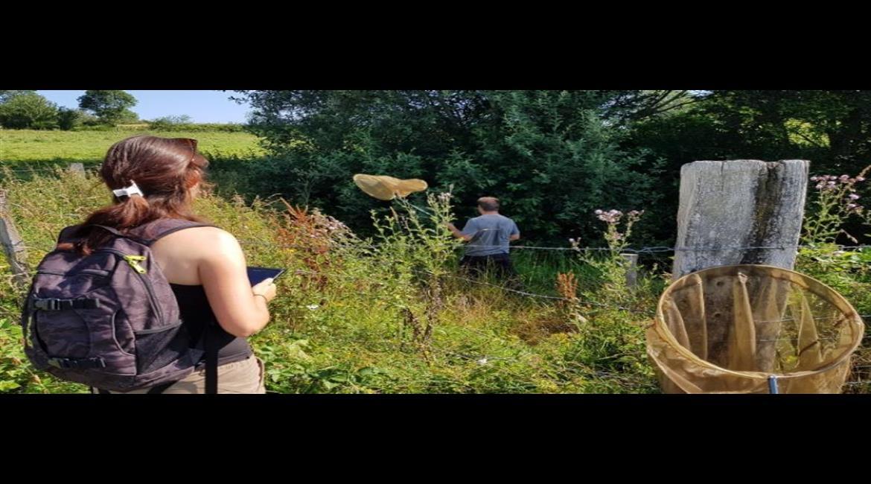 Randonner au profit de la biodiversité dans la Loire